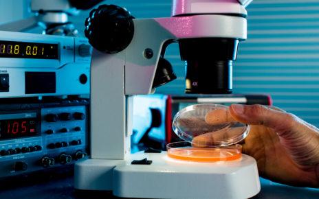 Badanie: w ranach u pacjentów z cukrzycą występują pewne szczepy gronkowca złocistego