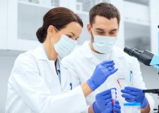 Uważane dotąd za niekorzystne fibrocyty mogą pomóc odbudować uszkodzoną tkankę