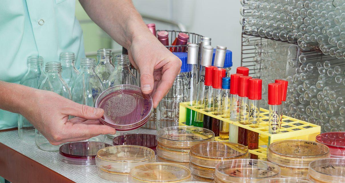 WHO stworzyło nowe narzędzie do zatrzymania antybiotykooporności