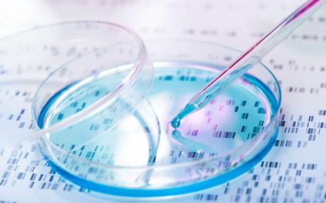 Innowacyjny, bioaktywny hydrożel wspomoże naturalne procesy lecznicze organizmu