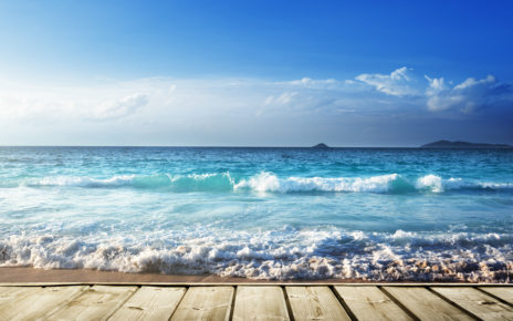 Niebezpieczne przecinkowce w Morzu Bałtyckim
