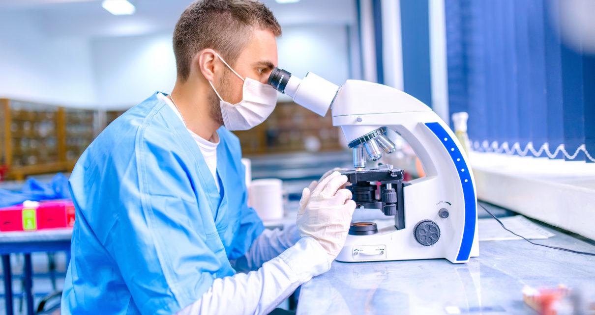 Nieznana dotąd rola komórek, które w obecności bakterii wspomagają gojenie