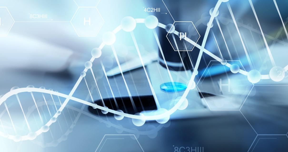 Polscy naukowcy pracują nad opatrunkiem biologicznym